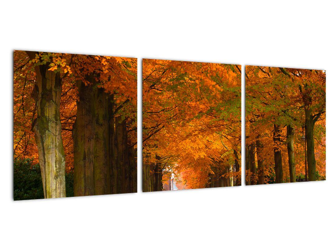 Obraz cesty lesom na jeseň