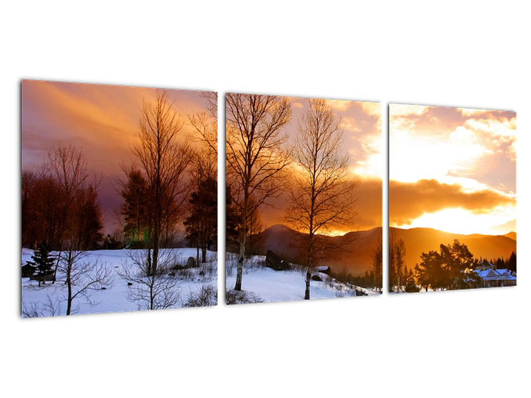 Obraz zimnej krajiny