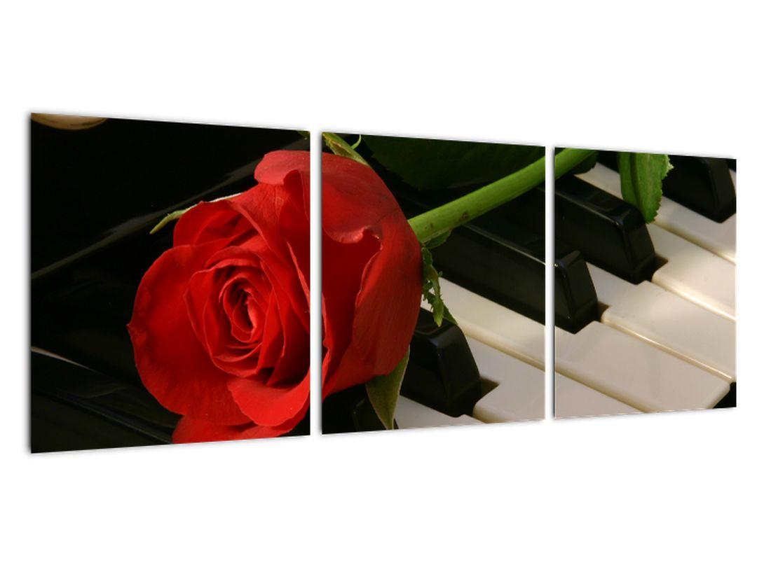 Obraz ruže na klavíri