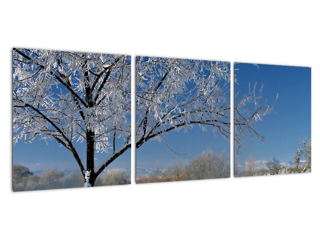 Obraz zamrznuté zimnej krajiny