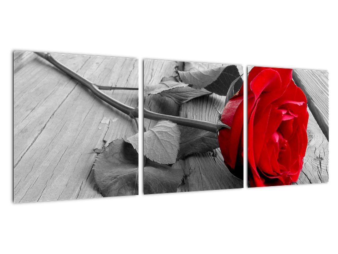 Obraz ruže s červeným kvetom