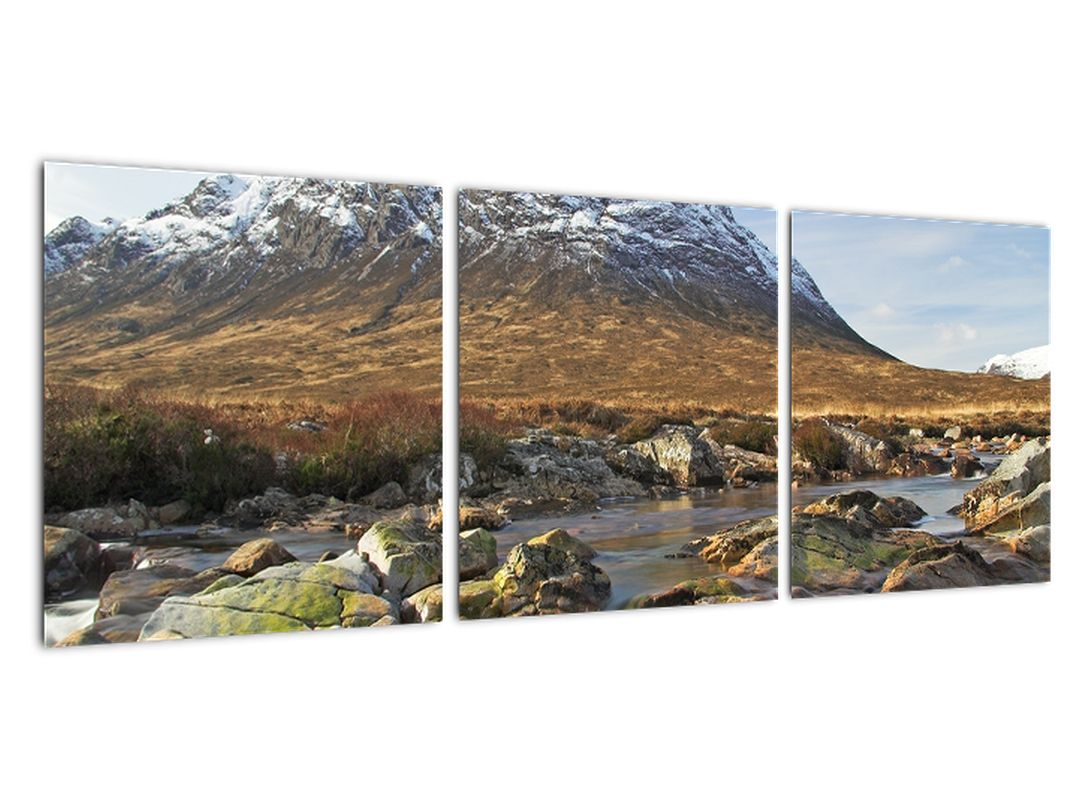 Obraz - príroda sa zasneženou horou v pozadí