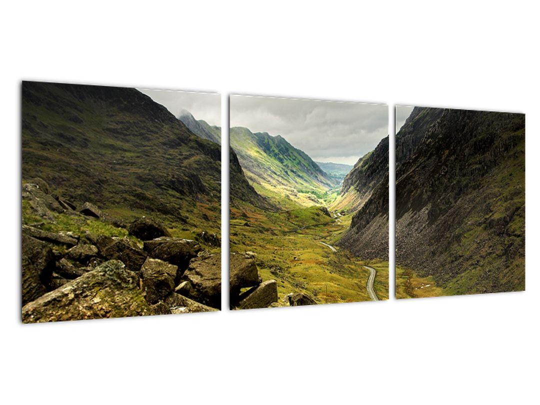 Obraz hôr