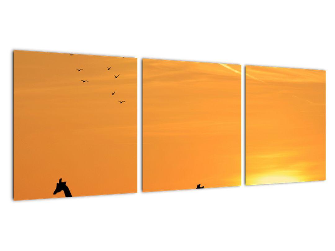 Moderný obraz - žirafy