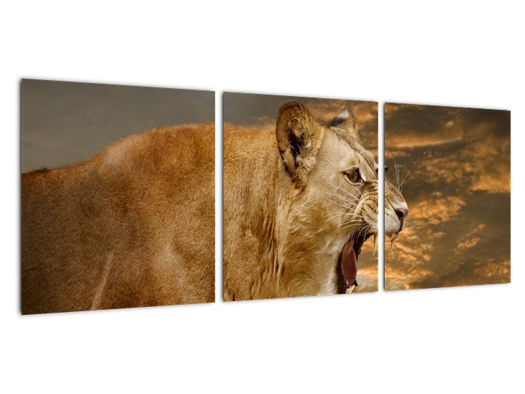 Obraz revúceho leva