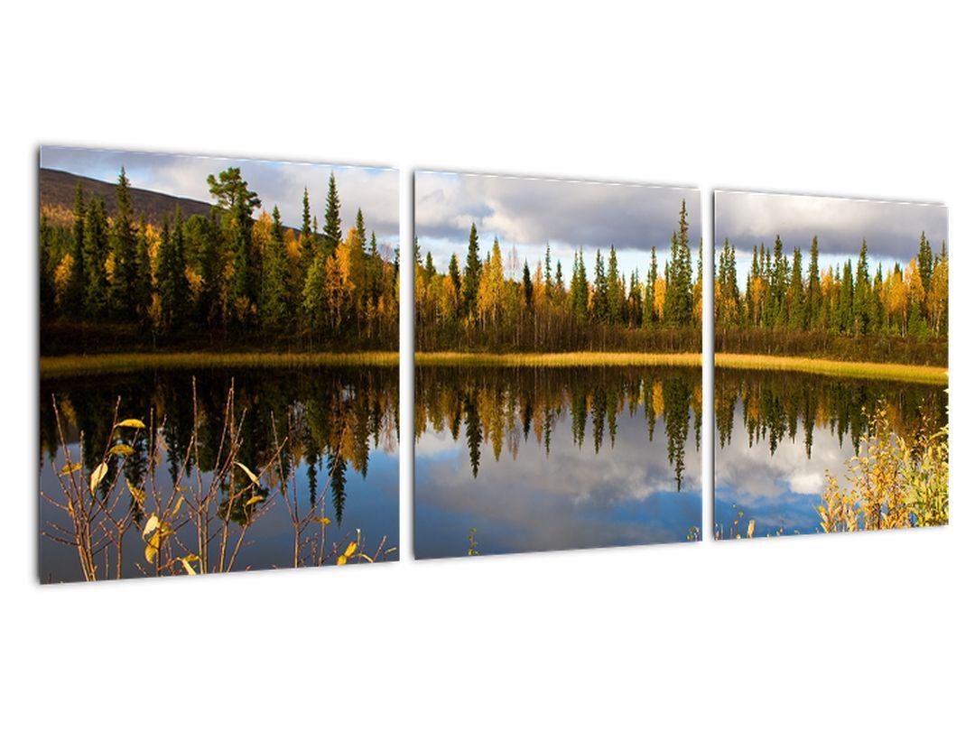 Obraz na stenu - lesné jazierko
