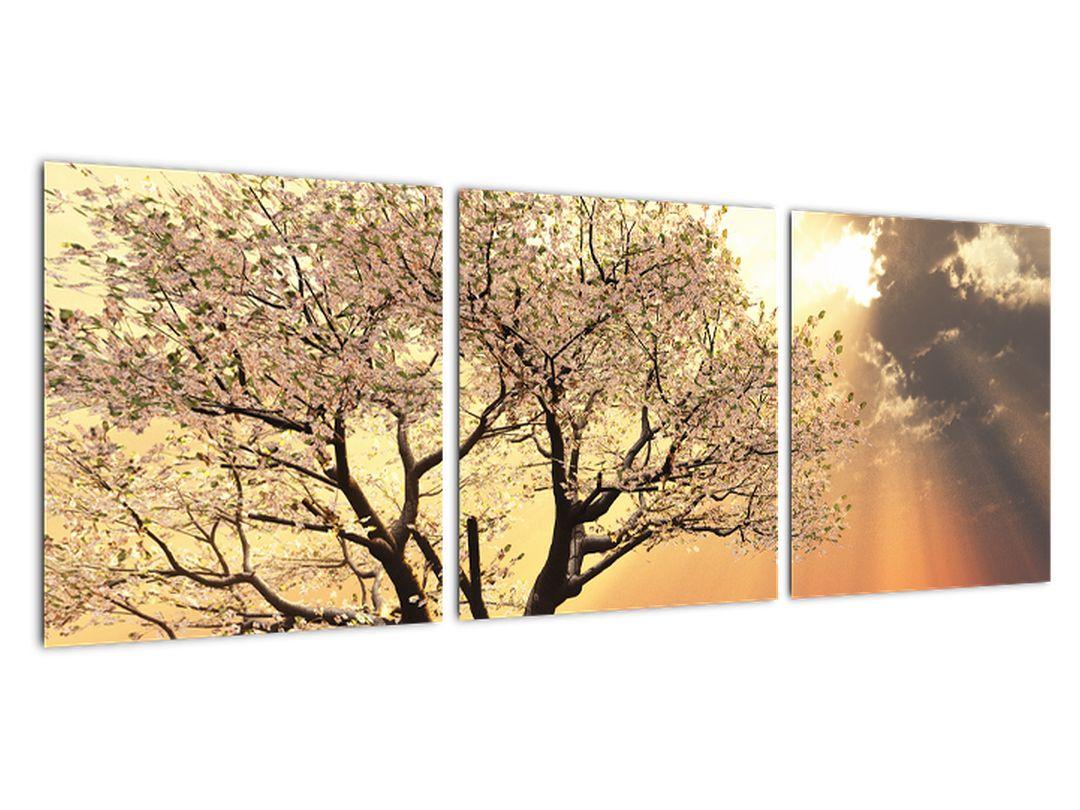 Obraz prírody - strom