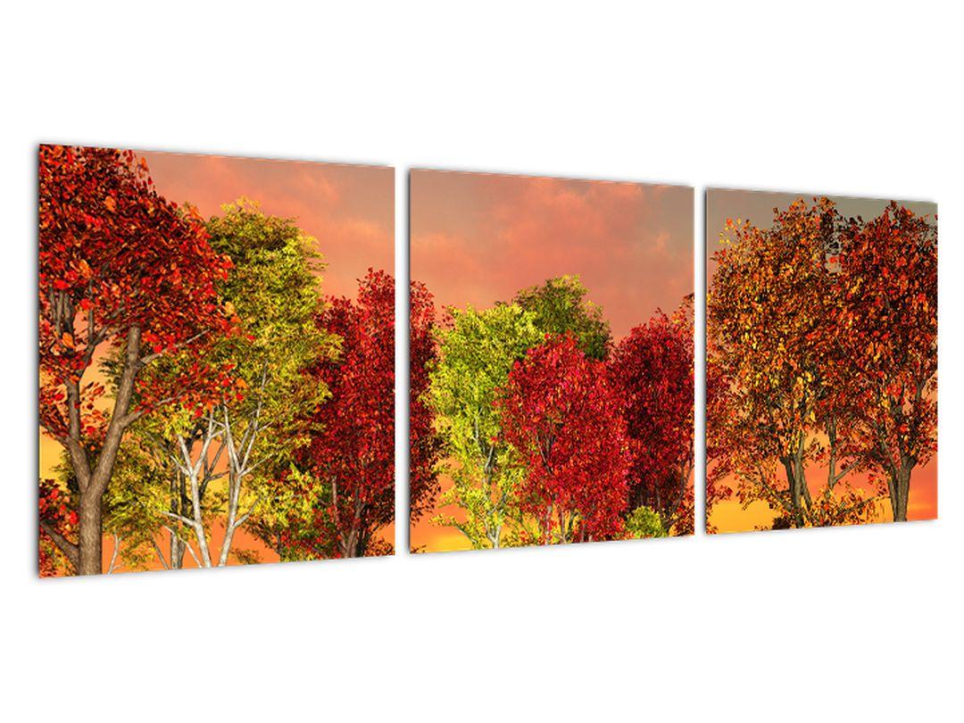 Obraz prírody - farebné stromy