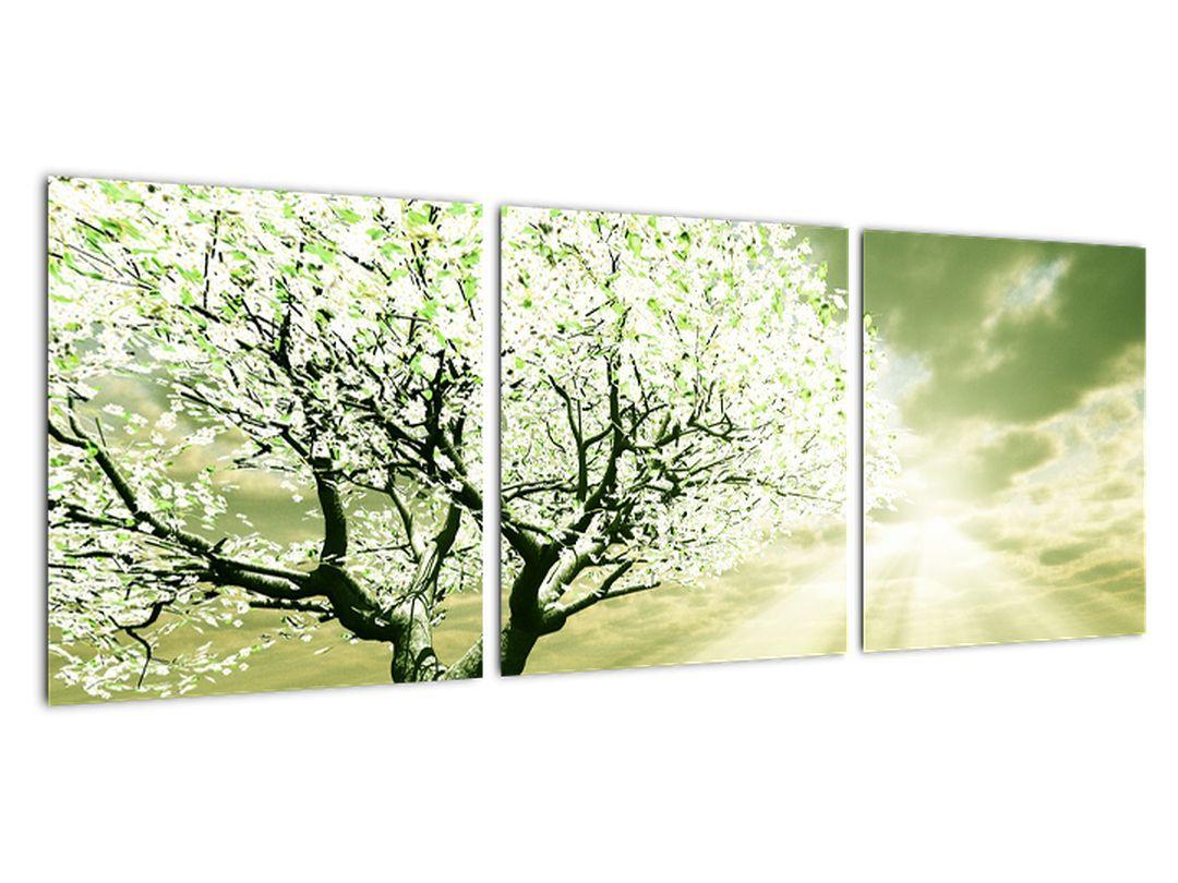 Jarný strom - moderný obraz