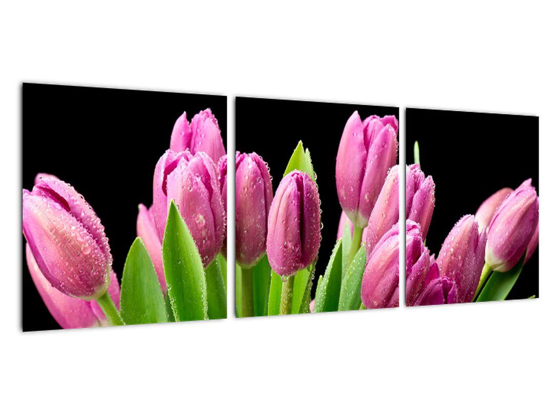 Obraz tulipánov