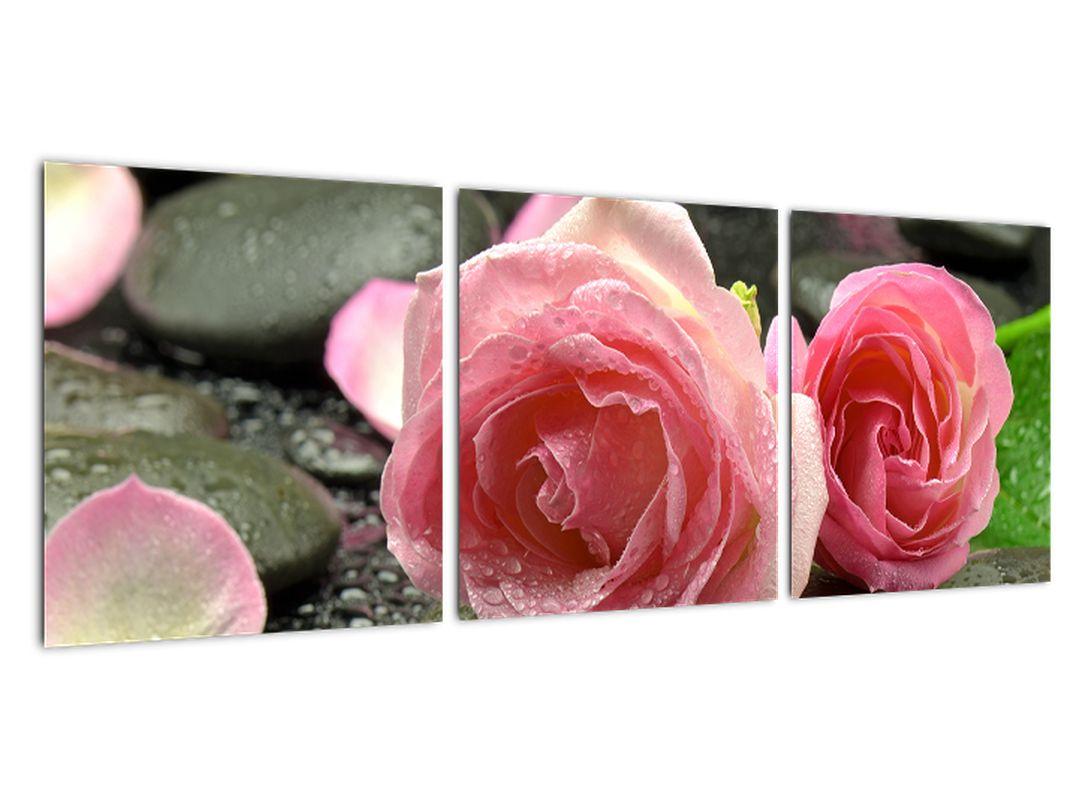 Obraz ruže