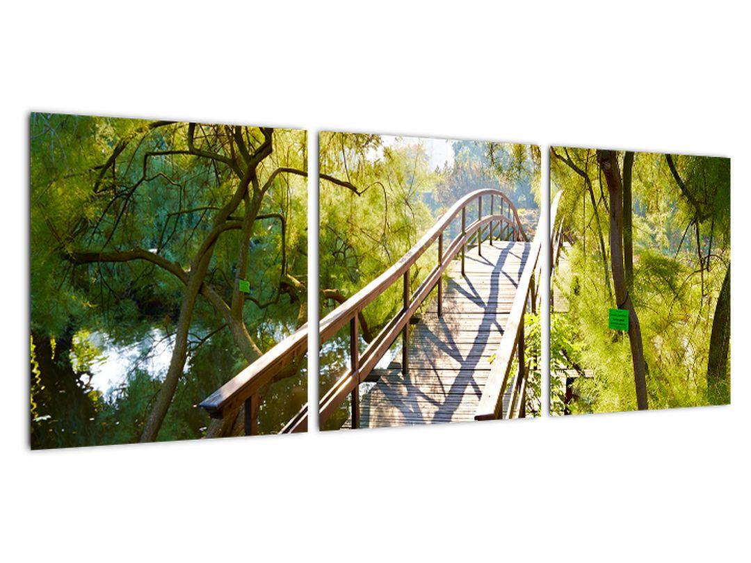 Moderné obraz - most cez vodu