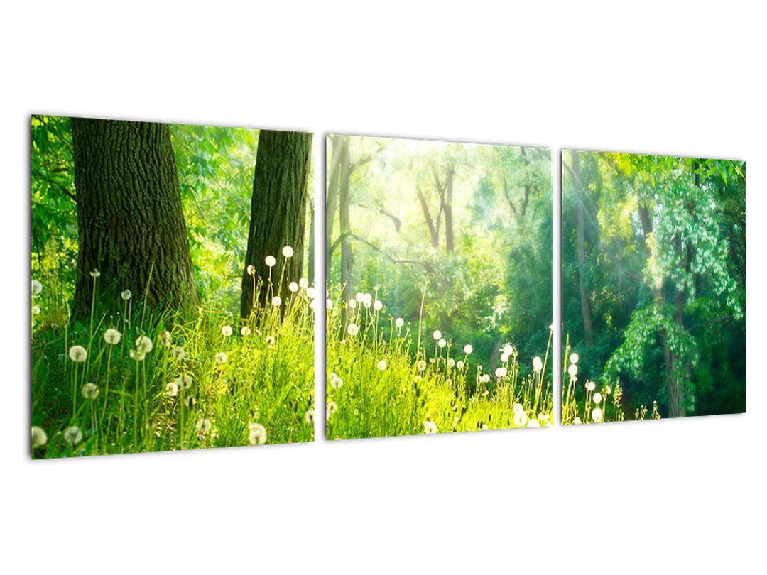 Moderné obrazy prírody