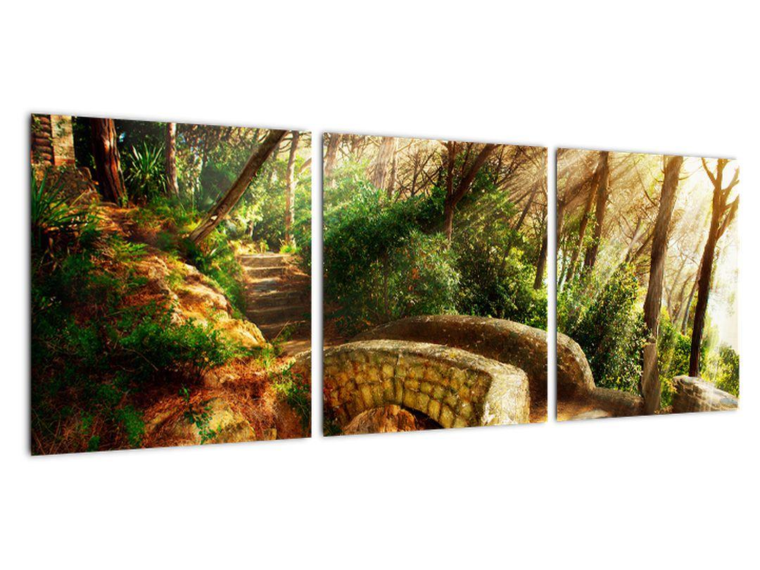 Obraz lesné cesty