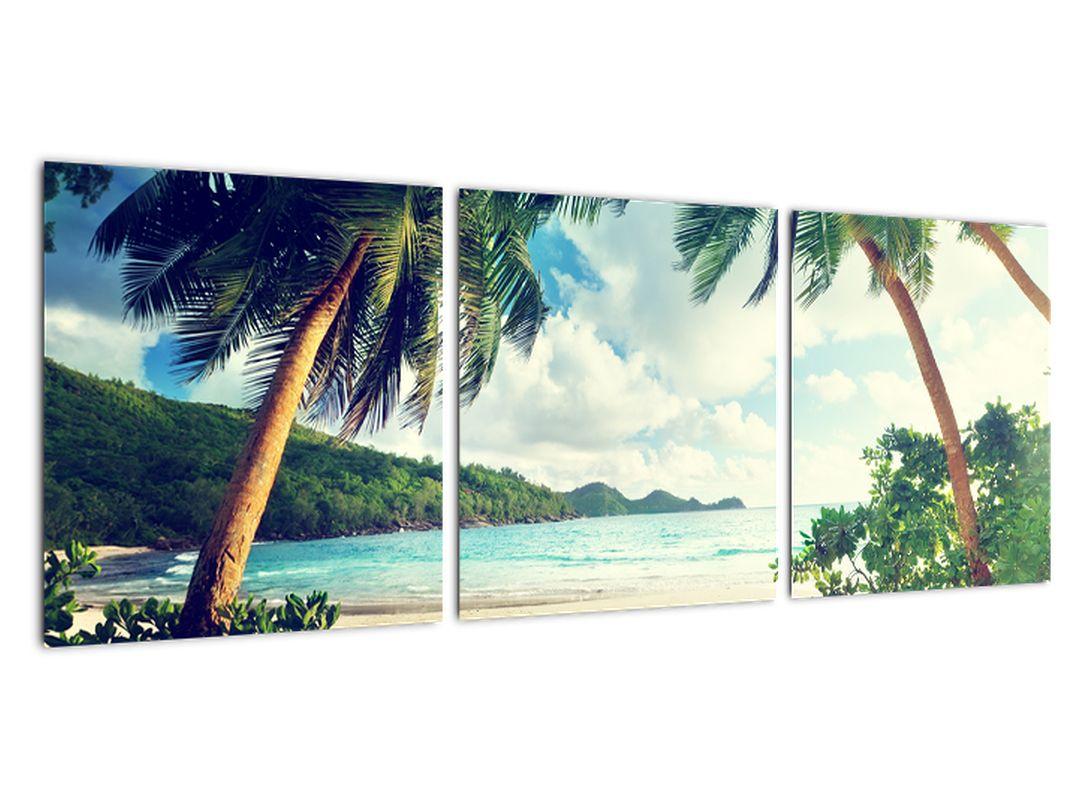 Obraz paliem na pláži