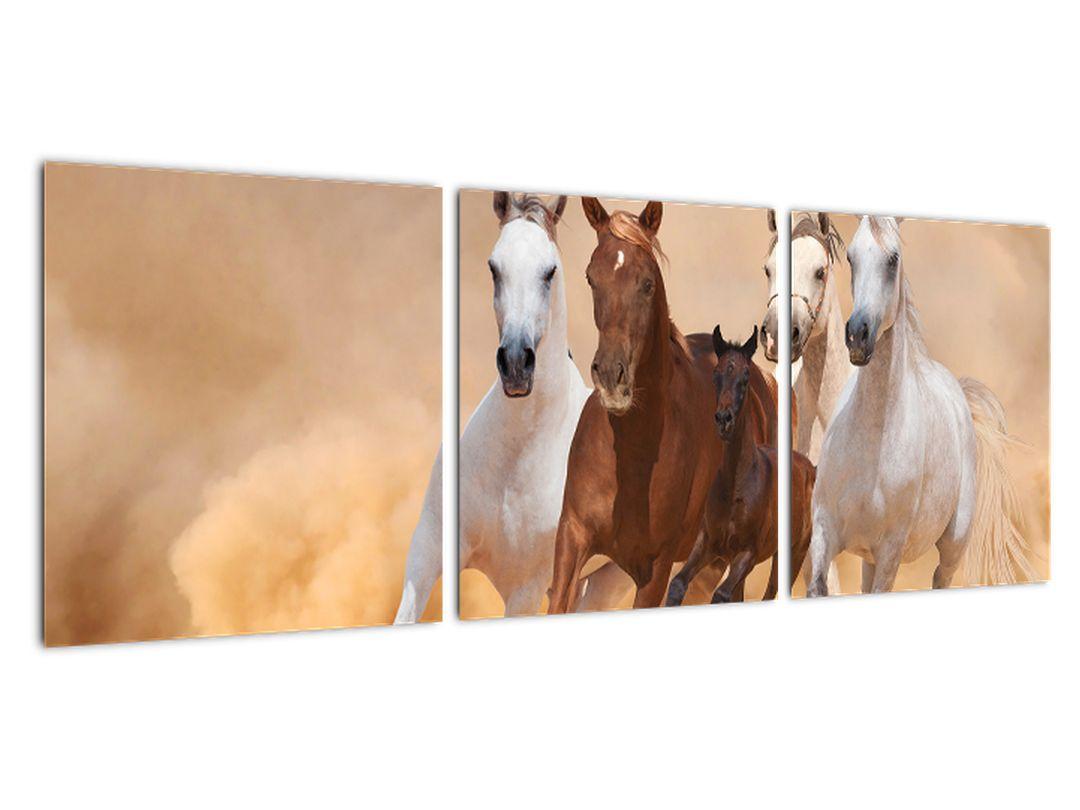 Obrazy bežiacich koní