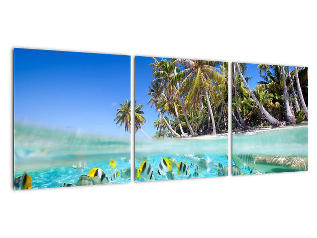 Obraz tropického mora