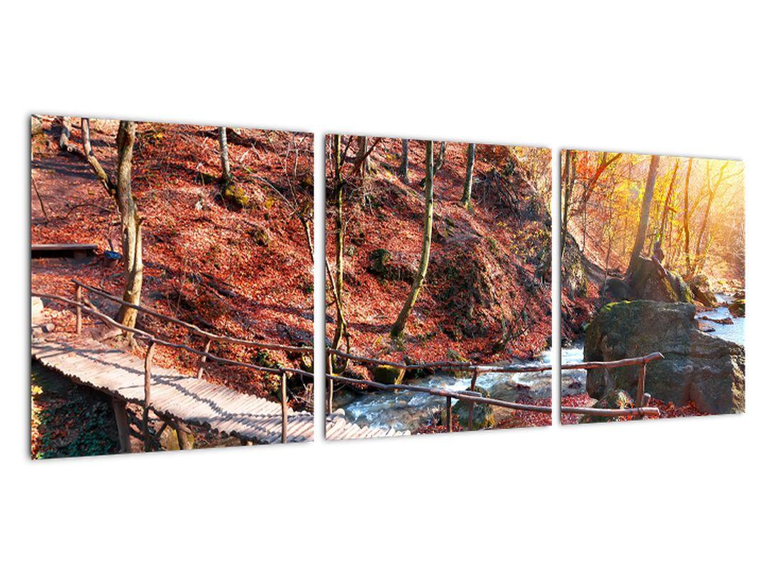 Obraz mosta - jesenné cesta lesom