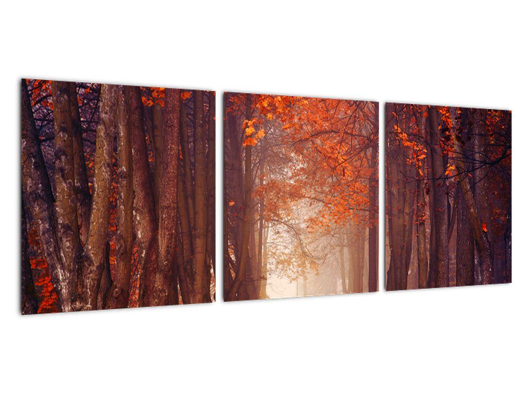 Jesenné les - obraz