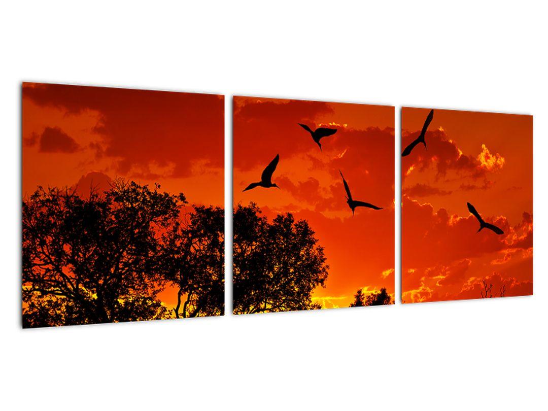 Obraz zapadajúceho slnka s vtákmi