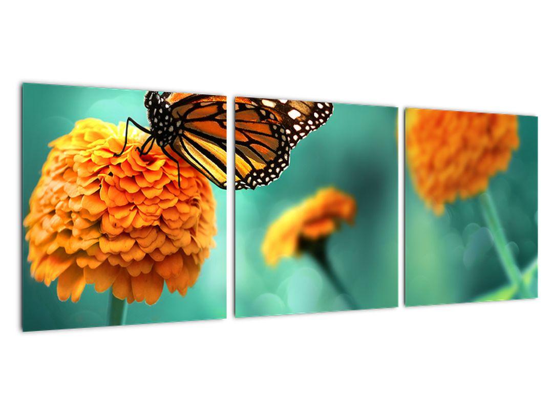 Obraz kvetín