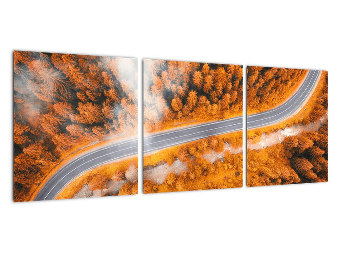 Cesta lesom - moderné obrazy na stenu