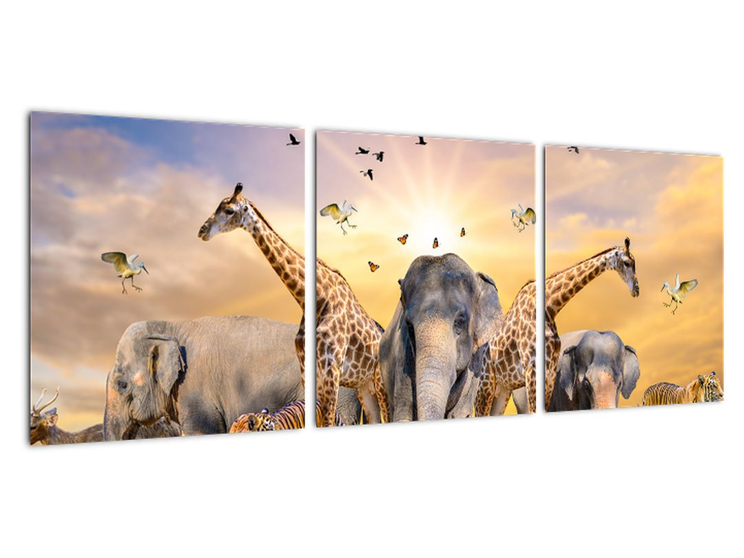 Obraz - safari