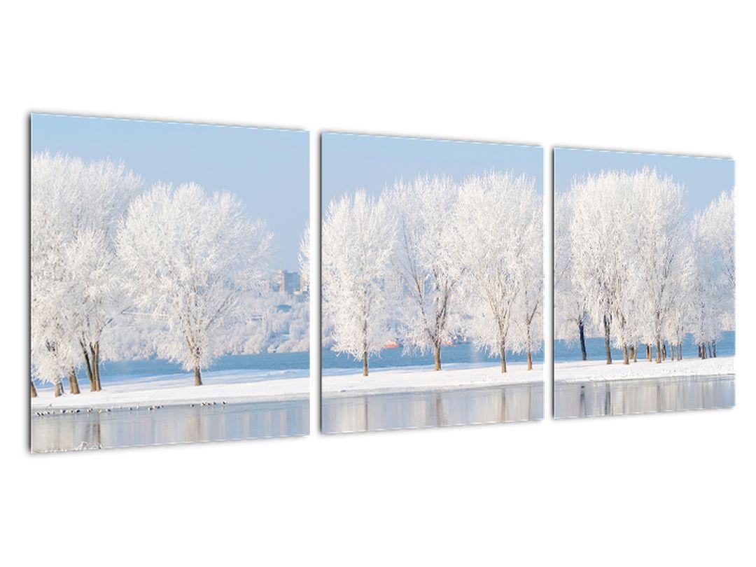 Obraz - zimná príroda