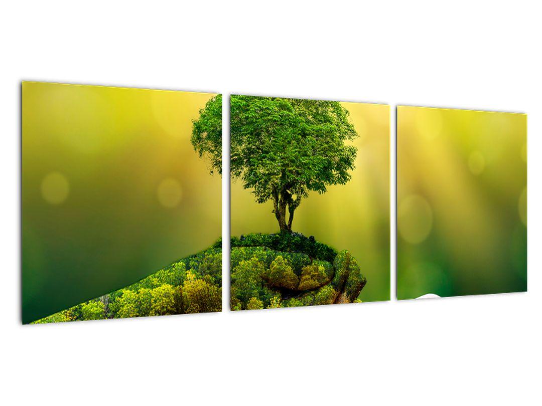 Moderný obraz - príroda