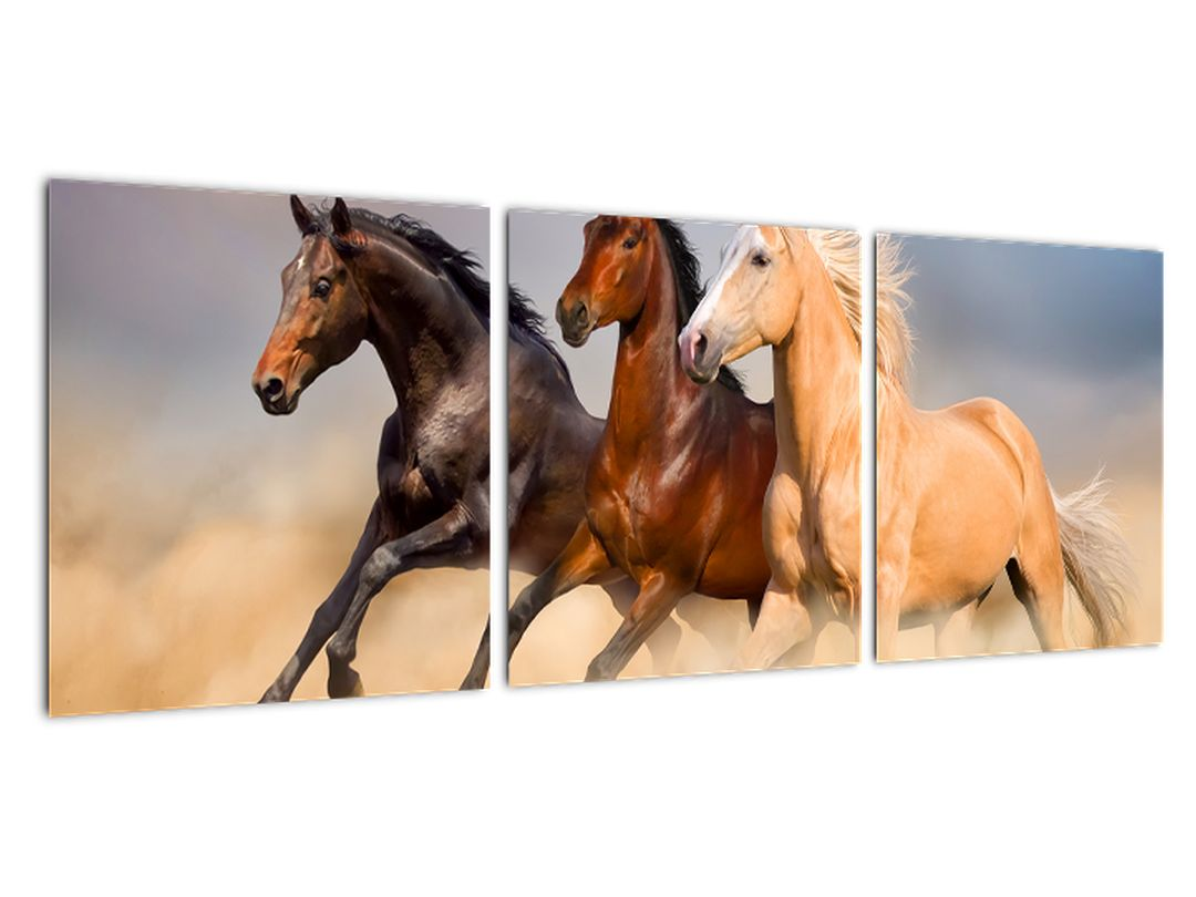 Moderný obraz koní