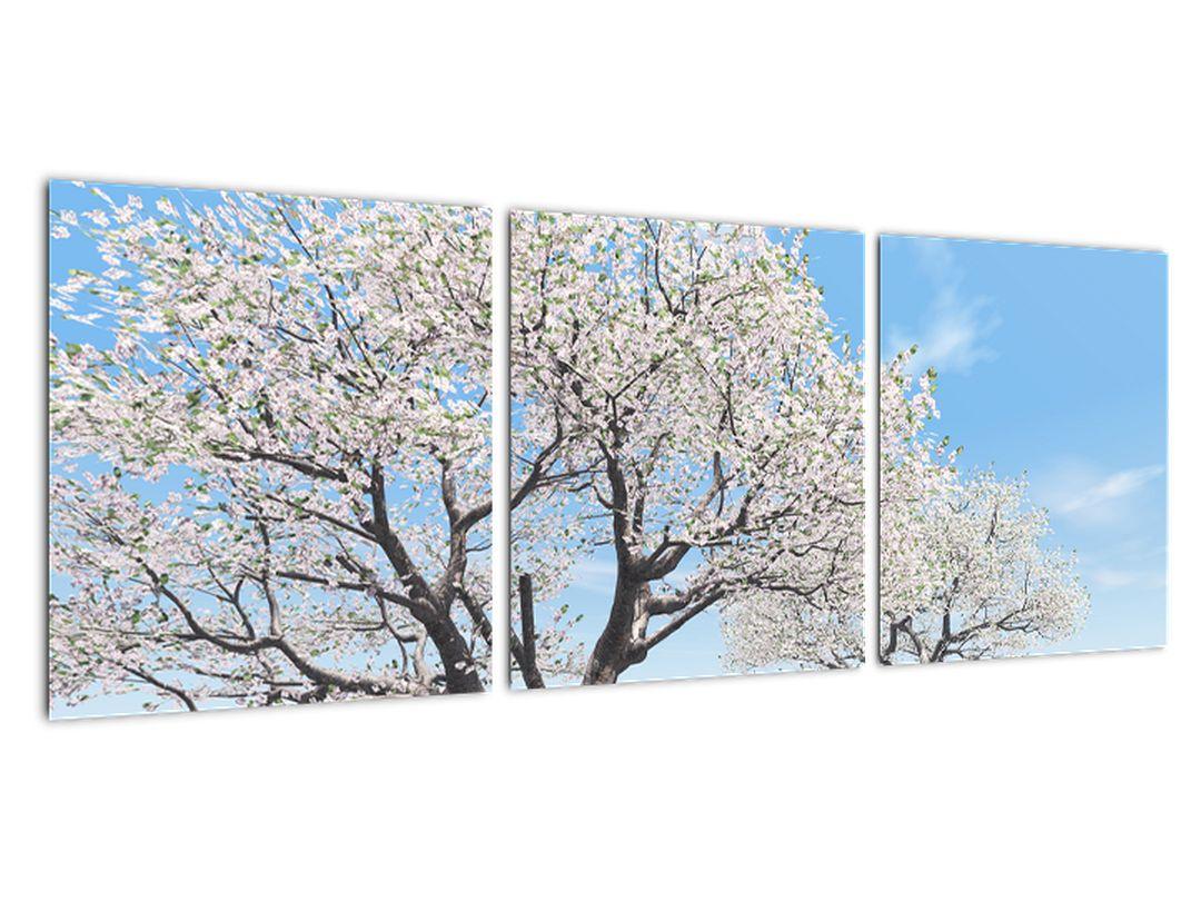 Obraz kvitnúceho stromu na jarné lúke