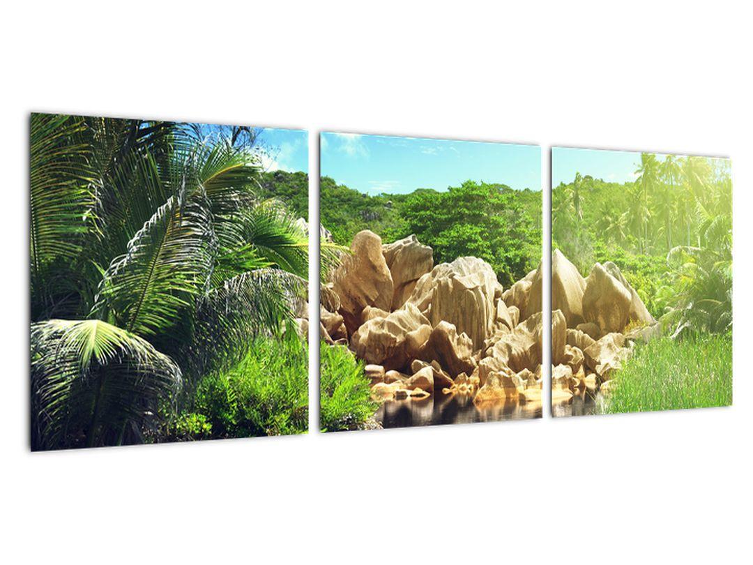 Obraz jazera na Seychelách