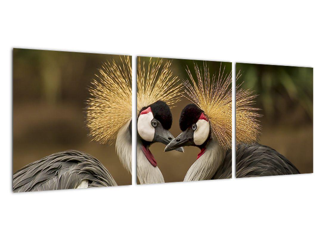 Obraz na stenu - zvieratá