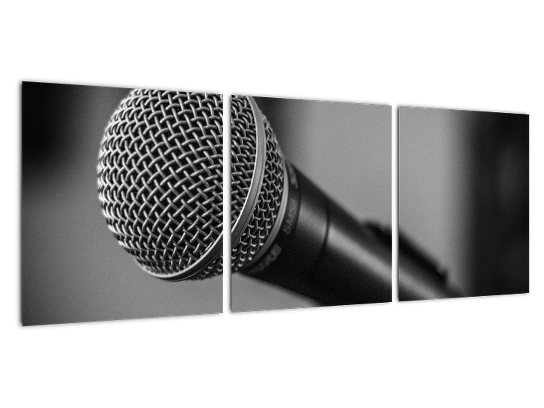 Obraz mikrofónu