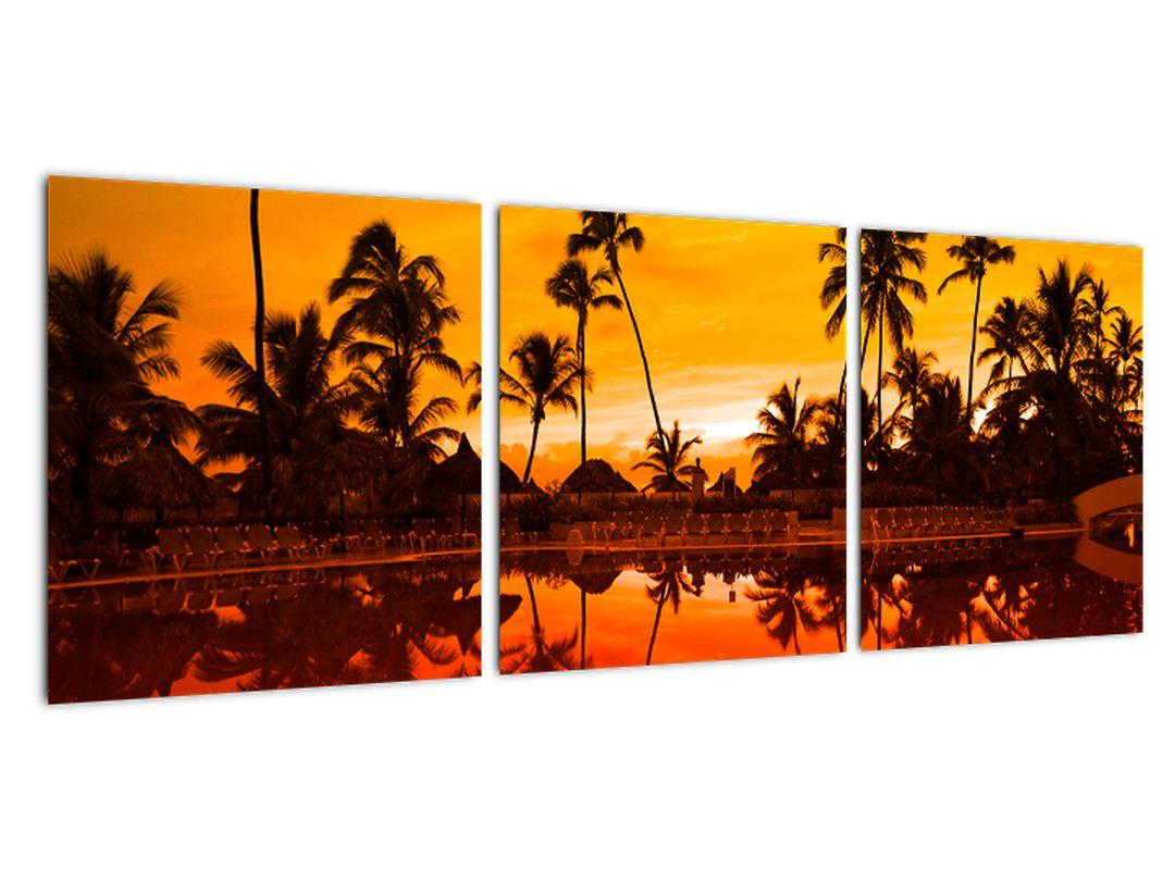 Obraz - tropická krajina