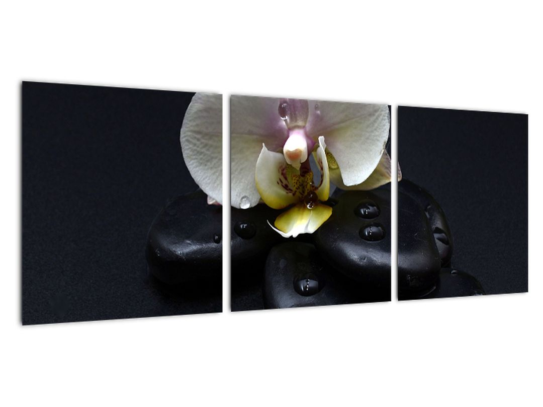 Obraz kvetu