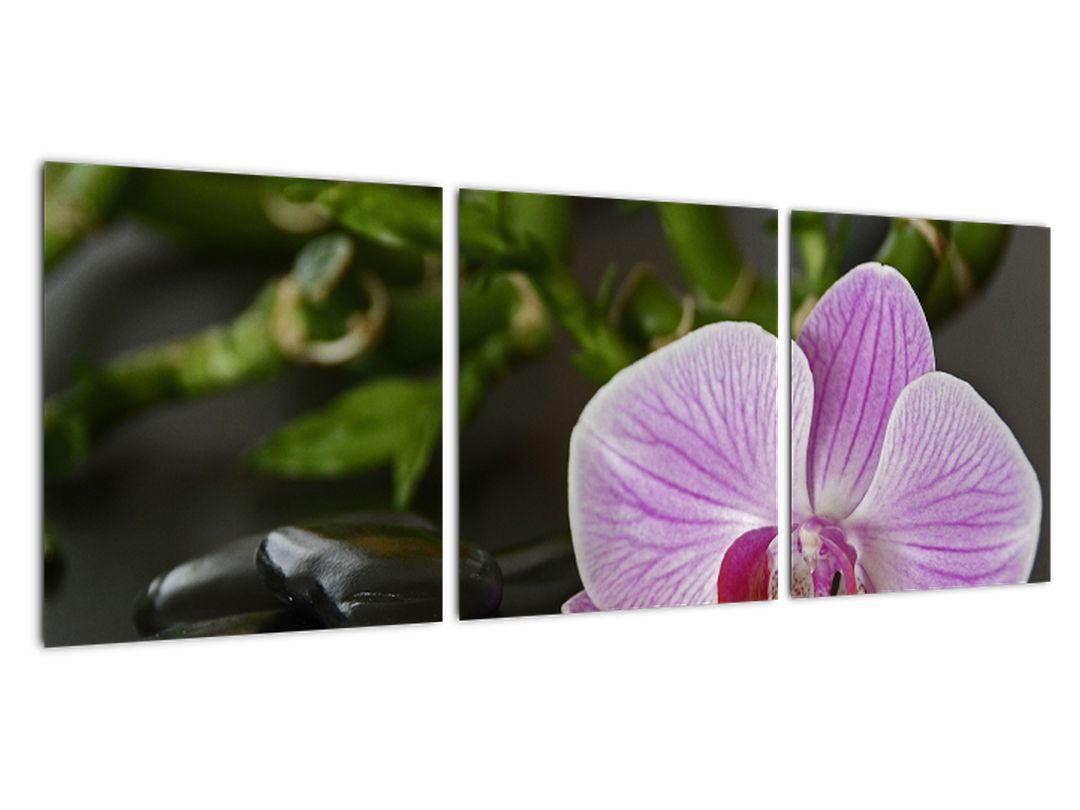 Moderný obraz kvetu